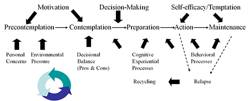 Figure 1 - Stages of Change